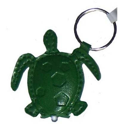 Turtle torch