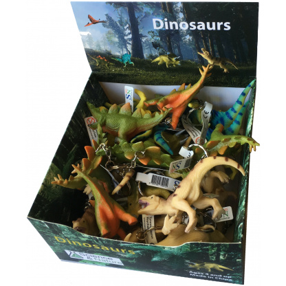 Dinosaur keychain display box