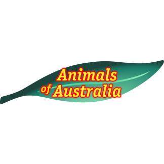 Animal Replicas