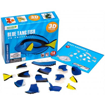 Blue Tang box and contents