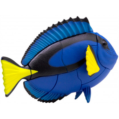 265490 2 The 3D puzzle of a Blue Tang fish is fun to construct and is a great display model.