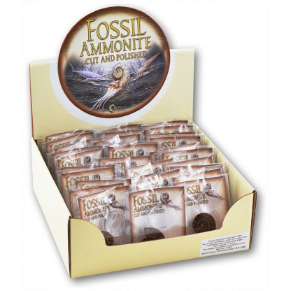 3057 Each bag includes a cut and polished Ammonite, a magnifying glass to closely inspect the fossil and an information sheet.