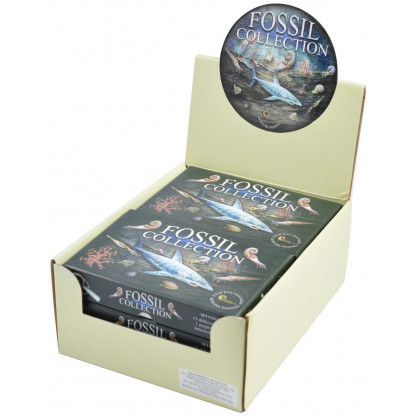 3153 A well priced fossil collection box. Each pack contains 15 fossils, magnifier and identification chart.