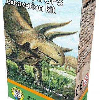 Triceratops excavation kit box