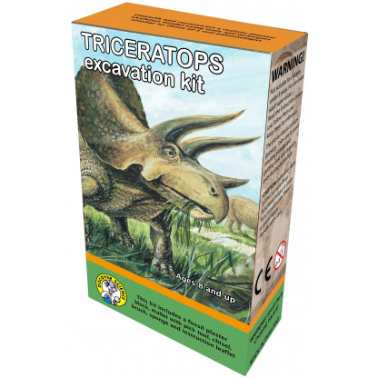 Triceratops excavation kit box