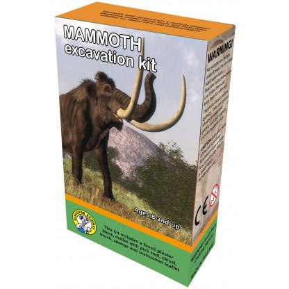 Mammoth excavation box
