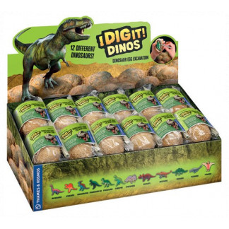 IDigIt Dinos display