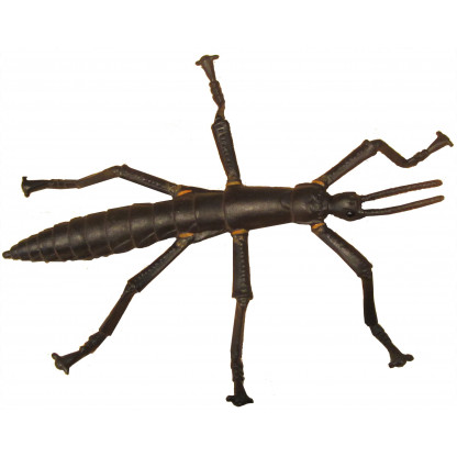 Lord Howe Island Stick insect figurine