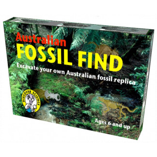 Fossil Find Box