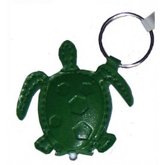 Turtle torch