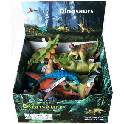 Dinosaur Display box