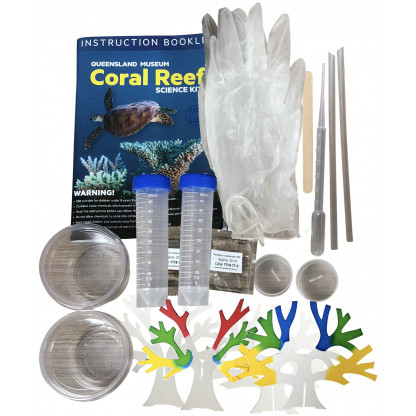 "75445 2 <span style=""font-family: Verdana;"">Learn about coral reefs, why they are so important and what threatens their future. The instruction booklet includes detailed information about the classification of corals and how they are formed.</span><span style=""font-family: Verdana;""> </span>"