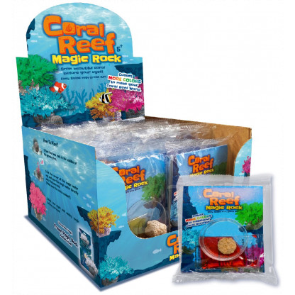Coral Reef display box