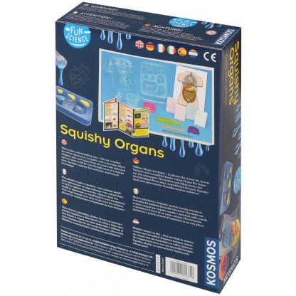 Squishy organs back of box